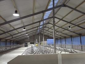 het is zeer prettig werken onder led verlichting door led klokarmaturen daarom bijzonder geschikt voor werkplaats fabriek opslaghal koeienstal